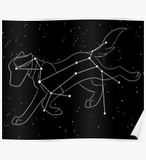 Sirius and The Canis Major Poster