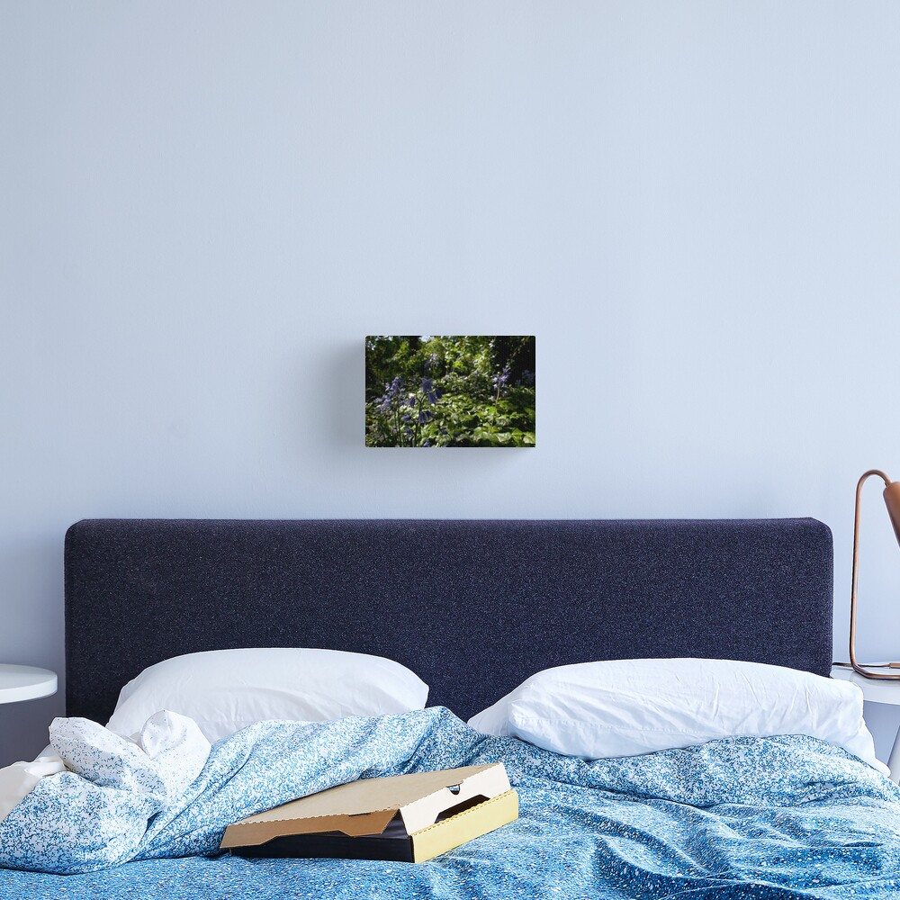 Spanish Bluebells in a Secret Garden Canvas Print