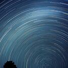 stars by Sue Hammond