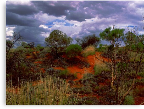 Central Australia II by Louise Fahy