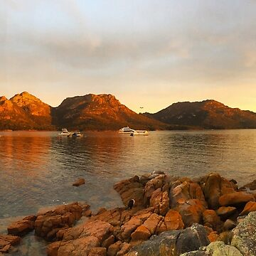 Freycinet Peninsula, eastcoast Tasmania, Australia by bodhiimages