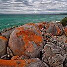 Bridport Boulders by Peter Daalder