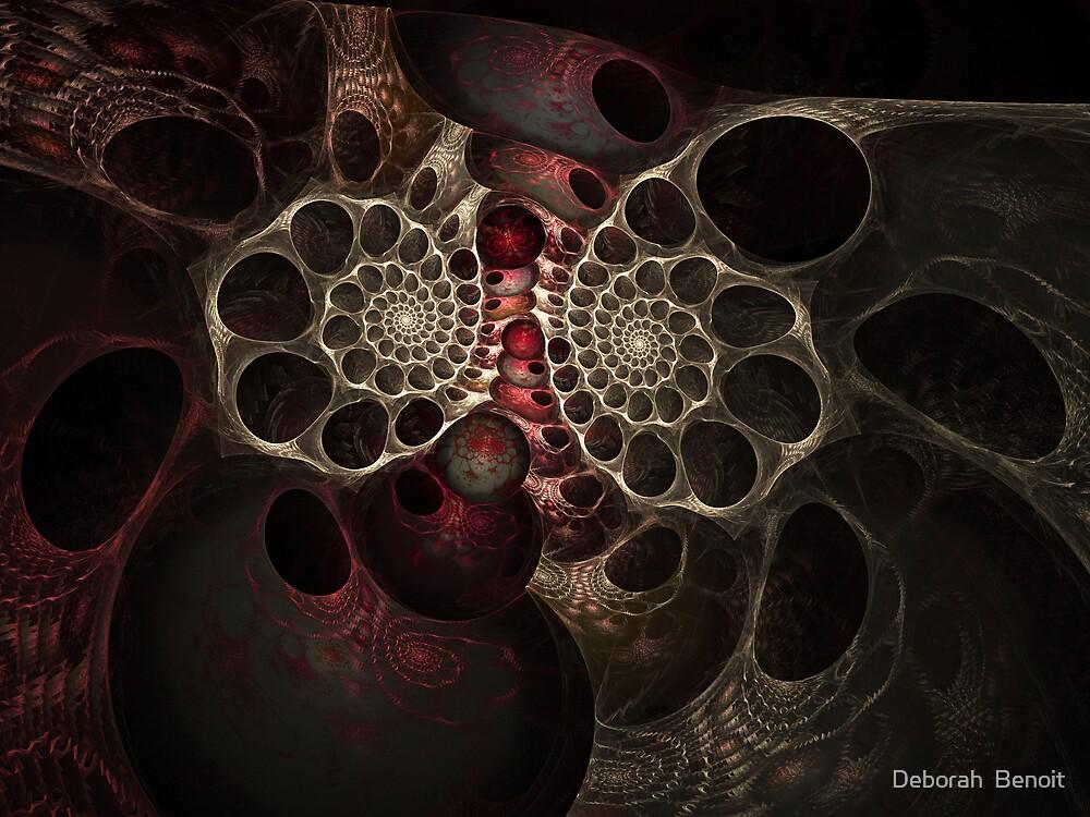 The Spiral Creature by Deborah  Benoit