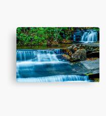 South Carolina Waterfalls Canvas Print
