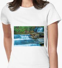 South Carolina Waterfalls Women's Fitted T-Shirt