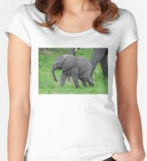 Baby African Elephant Women's Fitted Scoop T-Shirt