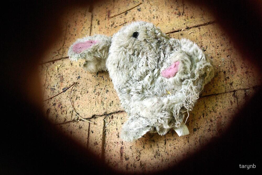 bunny in the spotlight by tarynb