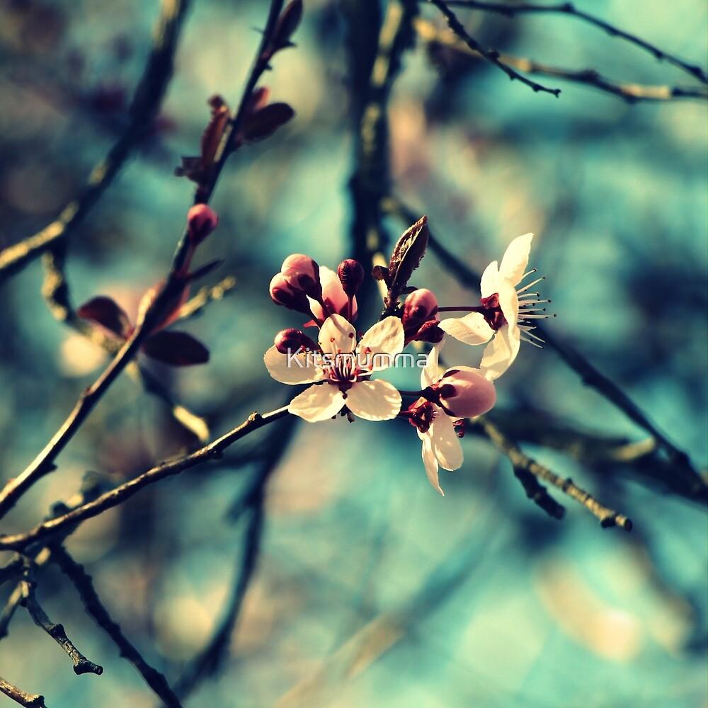 Blooming Beautiful by Kitsmumma