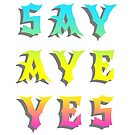 Say Aye Yes by alannarwhitney