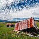 Bacala Barns by Peter Daalder