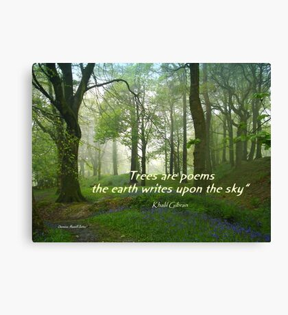 Trees are Poems Canvas Print