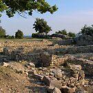 Oppidum of Julius Cesar's Camp - Laudun  by 29Breizh33