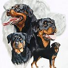 Rottweiler Medley by BarbBarcikKeith