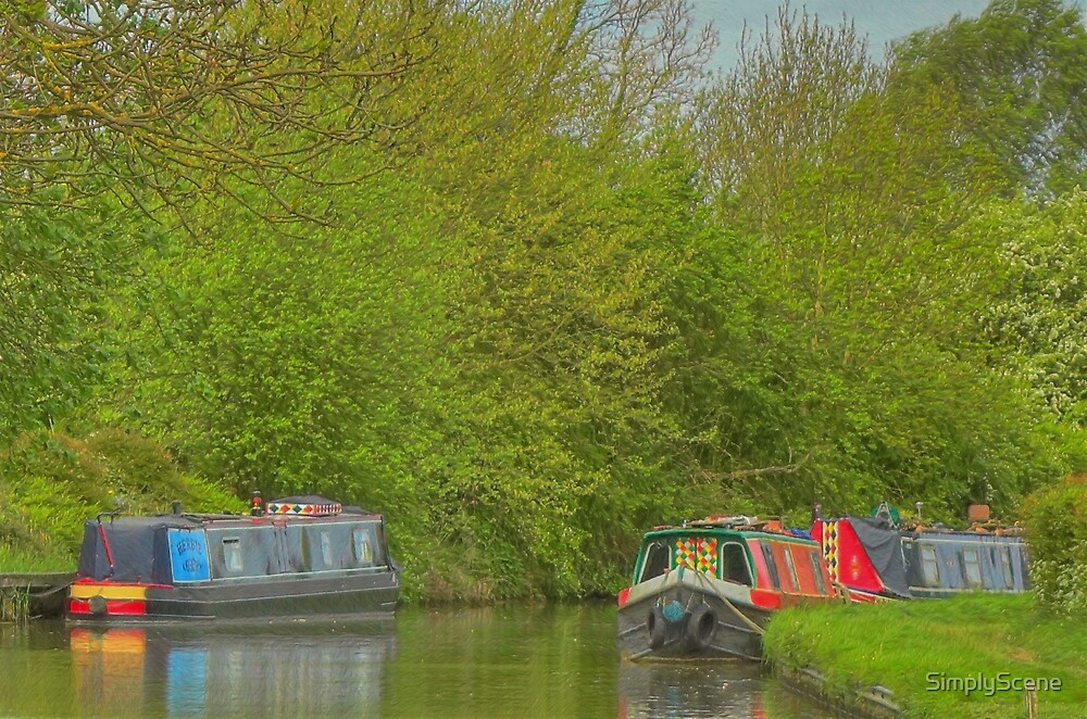 Narrowboat Herbie and Others - Buckby by SimplyScene