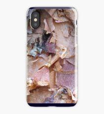Bark of the River Birch in Winter iPhone Case/Skin