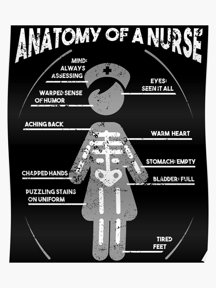 9dec2e1d55e3f Anatomy Of A Nurse Funny Nurse T Shirt RN Gift CNA Shirt
