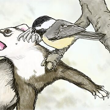 Ferret vs Chickadee by sneercampaign