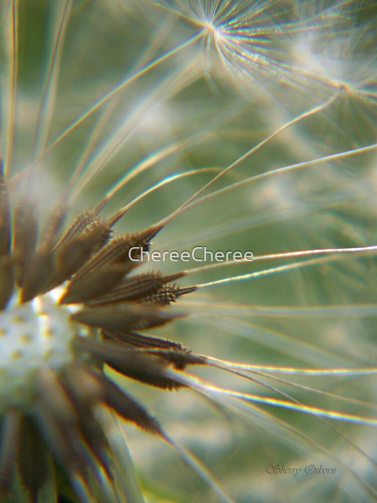 My Close up by ChereeCheree