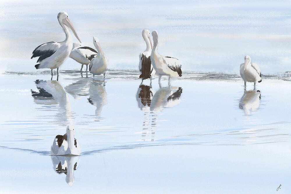 Looking For Fish by Jan Clarke