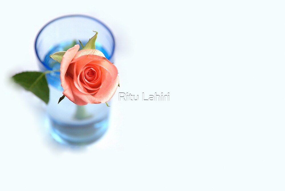 Beauty is an ecstasy; it is as simple as hunger. There is really nothing to be said about it. It is like the perfume of a rose: you can smell it and that is all. by Ritu Lahiri