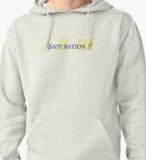 Saturation-Brockhampton Pullover Hoodie