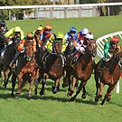 Horse racing action by quentinjlang