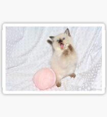 Goofy Kitty Sticker