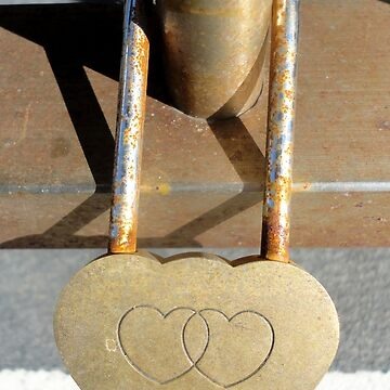 Love Locks -Intersecting Hearts, Forster 20161025 by muz2142