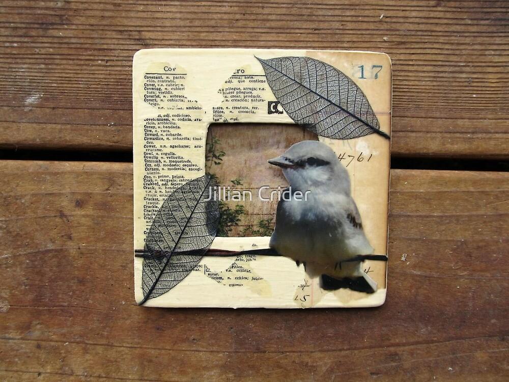 Bird Barbed Wire Fence Grasslands Collage Wood Frame by Jillian Crider