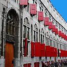 Many, many red windows by Tamara Travers