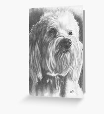 Schnoodle Greeting Card