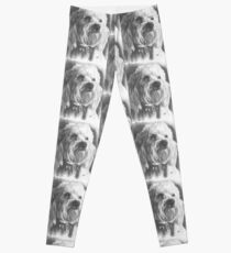 Schnoodle Leggings