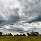 Stormy cloudscape over meadow, Poland, Europe by Lukasz Szczepanski