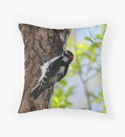 Male Downy Woodpecker Throw Pillow