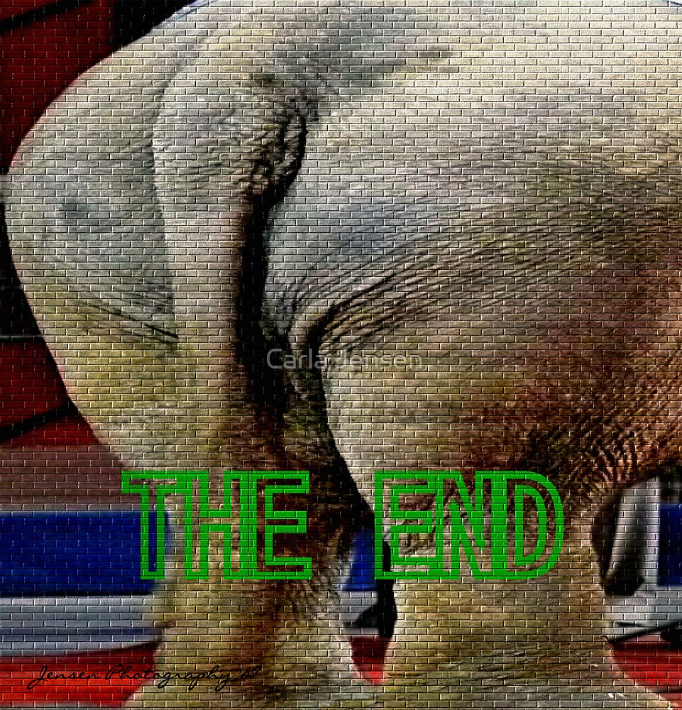 The End by Carla Jensen