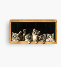 Cats in the frame Canvas Print