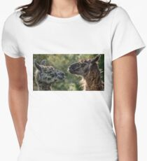 Sweet Llamas Women's Fitted T-Shirt