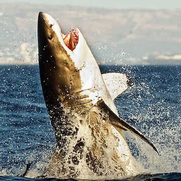 Realistic Great White Shark Jumping Out Of The Ocean by banwa