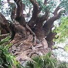 The Tree Of Life III by WaleskaL