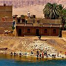 Washing in the Nile ! / (see large) by Nancy Richard