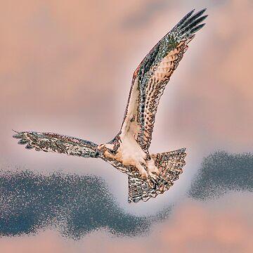 Fancy Flight by Kensabe