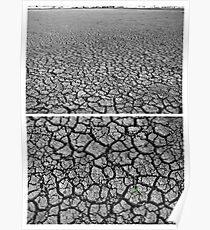 Dangars Lagoon, Uralla, New South Wales, Australia - Diptych Poster