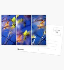 Beyond Blue - Triptych Postcards