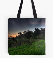 First Light over Rice Fields Tote Bag