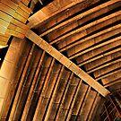 Opera House interior V by andreisky