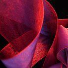 Ribbon by Barbara Morrison
