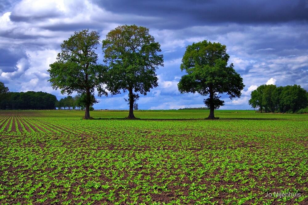 A Green Field & Dramatic Sky by Jo Nijenhuis