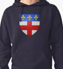 Coat of Arms of Fréjus, France Pullover Hoodie