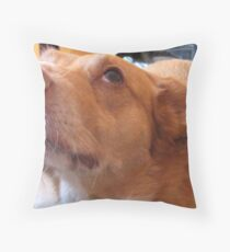 I Didn`t Throw Pillow