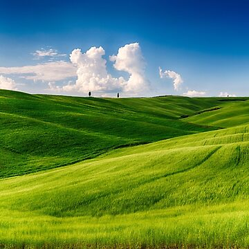 Rolling Hills of Tuscany I by ozeg